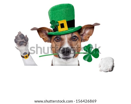 st. patrick's day dog with a clover behind a blank banner - stock photo