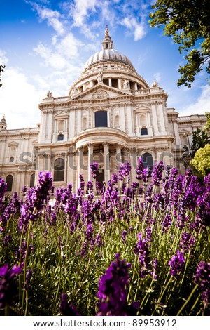 St Paul's Cathedral, London in the springtime, with beautiful lavender bushes in the foreground. Daytime. Portrait orientation. - stock photo