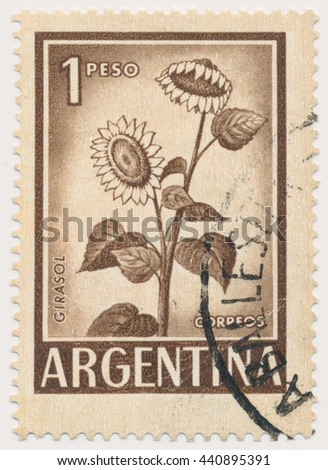 ST. PETERSBURG, RUSSIA - MAY 21, 2016: A postmark printed in Argentina, shows Sunflower, circa 1961 - stock photo