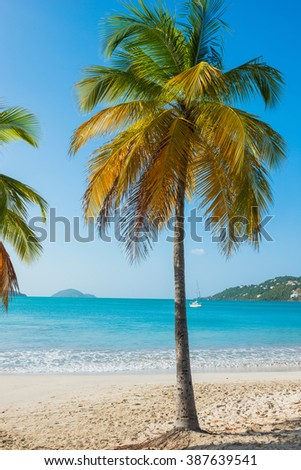 St. Thomas, US Virgin Islands Magen's Bay beautiful beach scene vertical - stock photo