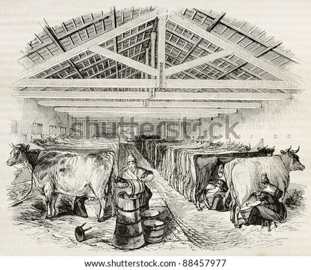 Stable old illustration. By unidentified author, published on Magasin Pittoresque, Paris, 1844 - stock photo