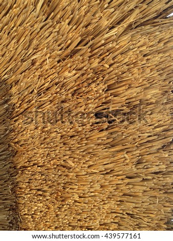 stack of bale hay straw - stock photo