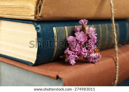 Stack of books with dry flowers close up - stock photo