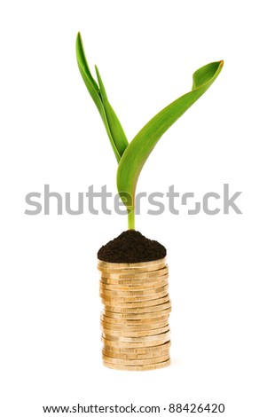 stack of coins and plant - stock photo