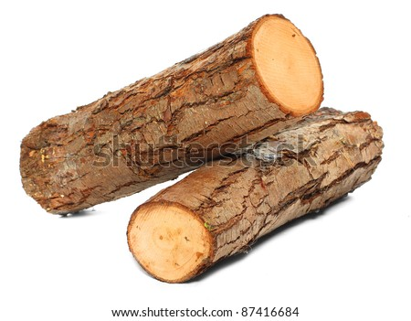 Stack of cut logs fire wood from Common Alder tree (Alnus glutinosa). Renewable resource of a energy. Environmental concept. - stock photo