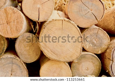 Stack of cut timber logs against. On an old paper. - stock photo