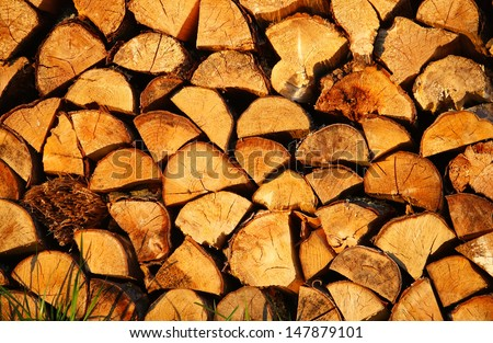 Stack of dry firewood is on the grass - stock photo