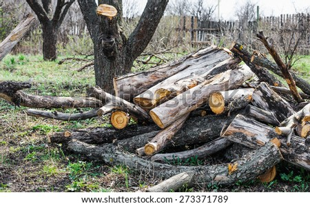 stack of firewood in a garden - stock photo