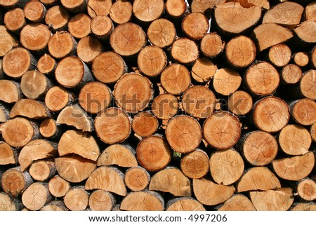 Stack of fresh firewood - interesting wooden abstract background.
