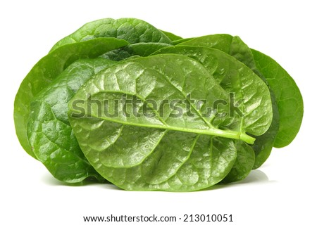 Stack of fresh malabar spinach vegetable leaves  - stock photo