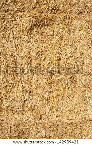 Stack of hay bales in a Shropshire field, England. - stock photo