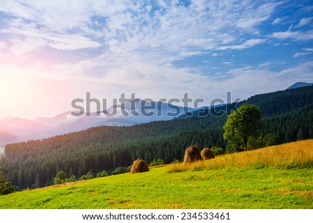 Stack of hay on a green meadow in the mountains.