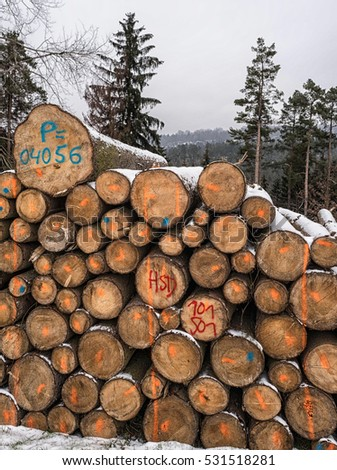 stack of logs waiting for transport. Germany