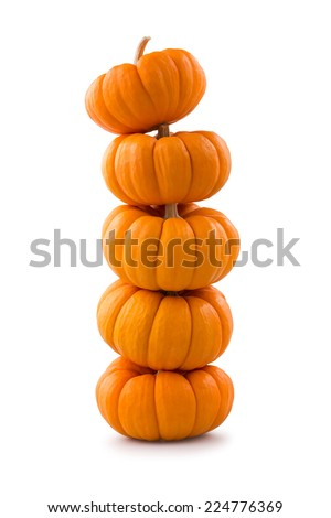 Stack of miniature pumpkins - stock photo