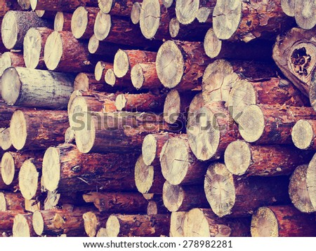 Stack of pine raw logs background, retro instagram style filtered - stock photo