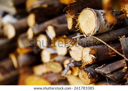 Stack of ready logs. Wood texture background. Selective focus. - stock photo
