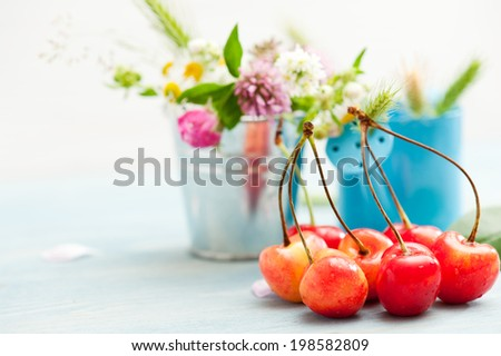 Stack of red and yellow cherries on blue wooden background with summer flowers and herbs - stock photo