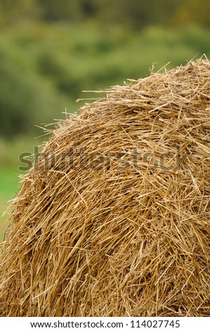 Stack of Straw in the Field - stock photo