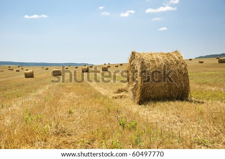 stack of straw on the mown field beneath a blue sky, Tuscany - stock photo