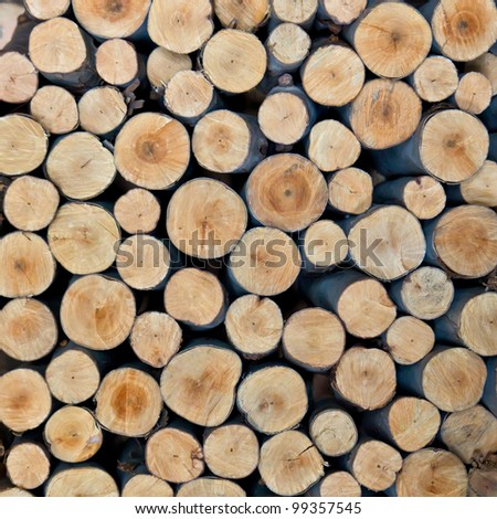 stack of tree stump for background - stock photo