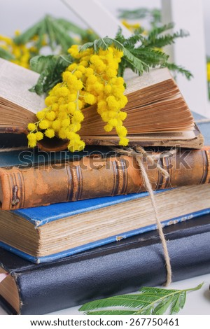 stack of vintage old books  with french mimosa flowers close up - stock photo
