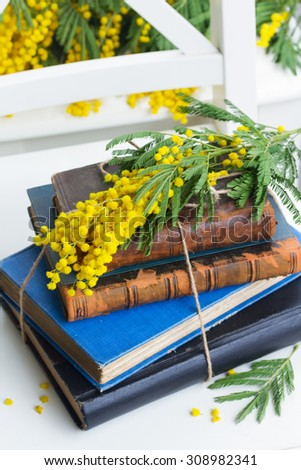 stack of vintage old books  with yellow mimosa flowers - stock photo