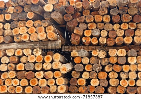 Stack of wood showing wood texture on cutting edge - stock photo