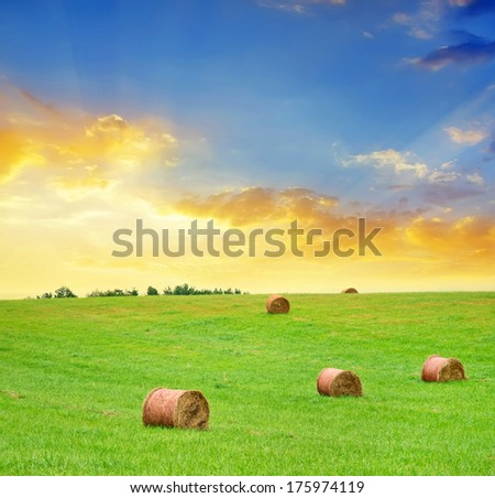 stack on field - stock photo