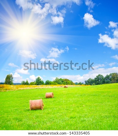stack on the field - stock photo