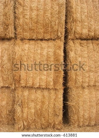 Stacked hay bails