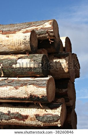 Stacked logs ready for shipping in Tasmania - stock photo