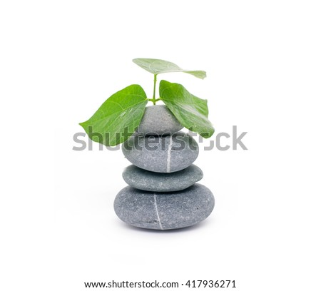 Stacked stones and green leaf  - stock photo