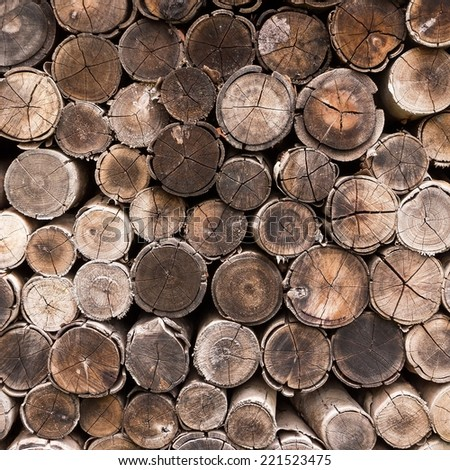 Stacked timber logs. - stock photo