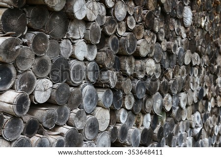 stacked timber logs as background. - stock photo