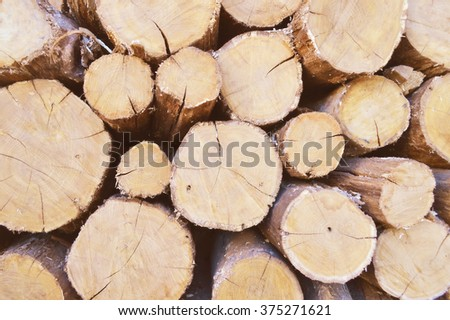 Stacked tree wood logs background