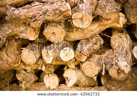 Stacked vine wood branches - stock photo