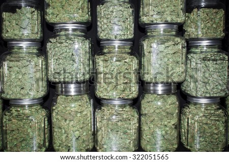 Stacked Wall of Glass jars Filled with Green Marijuana Buds - stock photo