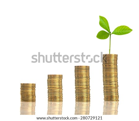 stacks of golden coins with seed on white background - stock photo
