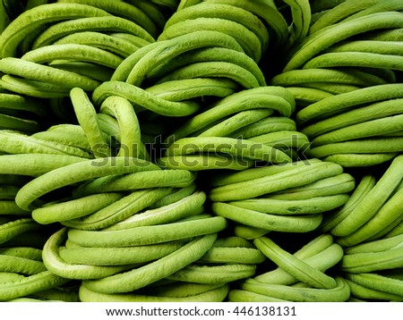 Stacks of long beans being sold in a market - stock photo