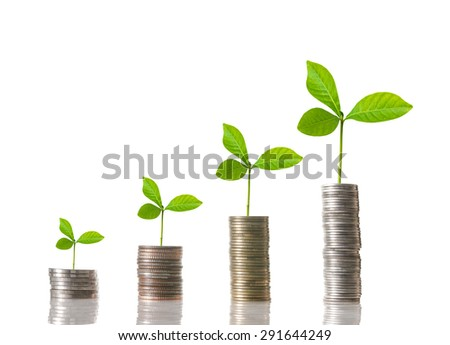 stacks of mix coins with seed on white background,business investment concept - stock photo