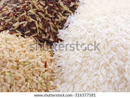 Stacks of raw gluten-free rice cereal ingredient, including white, brown, red and black rice grains on white table and background.  - stock photo