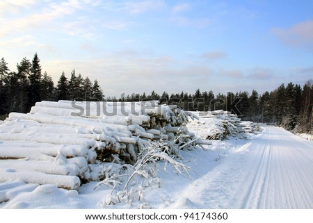 Stacks of snow covered wooden logs for energy and biomass by forest road in winter. - stock photo