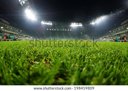 stadium, close up on grass - stock photo