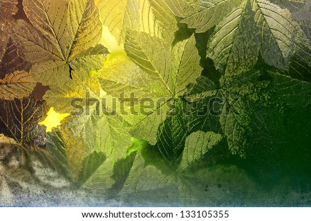 Stained glass window decorated with tree leaves and beautiful golden light coming through - stock photo