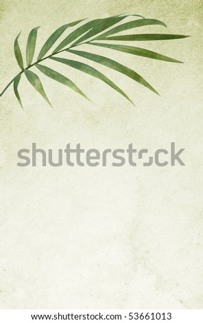Stained old paper background with palm leaf. - stock photo