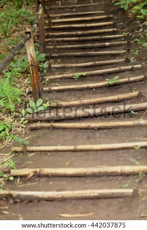 staircase bamboo  - stock photo