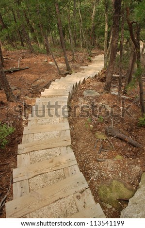 Staircase on Hiking Trail, Stone Mountain State Park, North Carolina