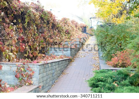Stairs and road in an autumn park