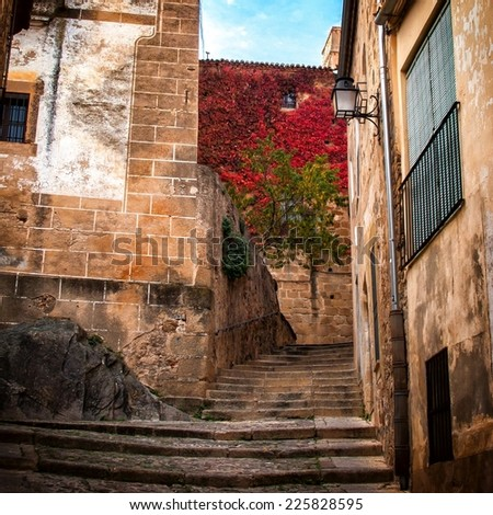 Stairs detail of narrow cobblestone alley in Caceres (Spain) - stock photo