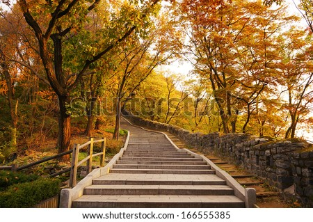 Stairs going uphill during autumn  - stock photo